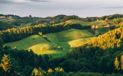 Steiermark – MICE Destination mit Herz